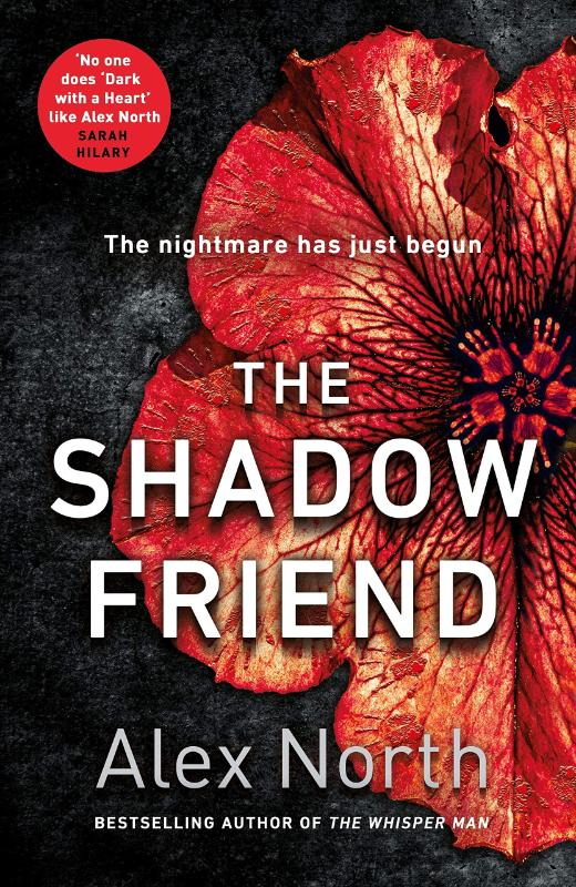The Shadow Friend