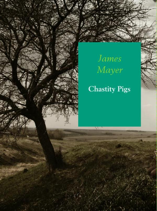 Chastity pigs